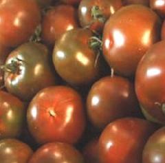 Tomate Moresco, schwarz-rote alte Sorte