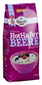 Hot Hafer Haferbrei Beere glutenfrei