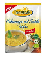 Hühner Suppe mit Nudeln