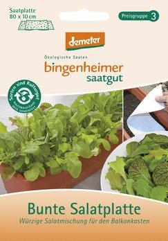 Bunte Salatplatte Saatplatte