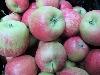 Apfel Sissyred KLII