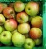 Apfel Braeburn