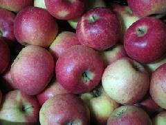 Apfel Natyra KLII