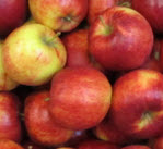 Apfel Jonagold KLII, Demeter