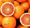 Orange Tarocco Halbblut Saftorange klein