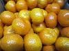 Clementine 2-4er kernlos, Spanien