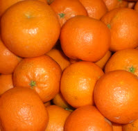 Clementine Spanien KLII ohne Kerne