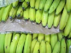 Banane Dom.Rep BCS