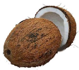 Kokosnuss BCS