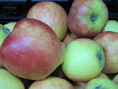 Apfel Kanzi NATURLAND KLII