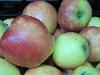 Apfel Kanzi KLII