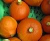 Kürbis Hokkaido orange ECOCERT