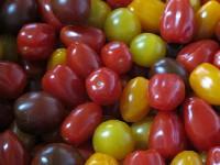 Tomaten, Cherrytomate bunter Mix