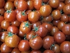Tomate, Aromatomate