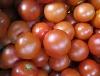Tomate, rund KLII