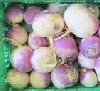 Navetrübchen weiß-violett BIOLAND