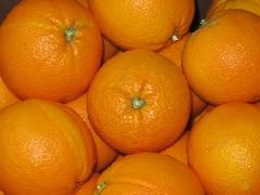 Orange Washington mit Schalenfehlern 4-6er KLII