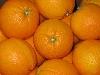Orange Washington 1-3, Griechenland KLII