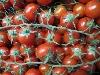 Tomate, Cherrystrauchtomate KLII