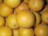 Orange, Saftorange klein KLII