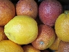 Orange Sanguinello, 5-6er KLII