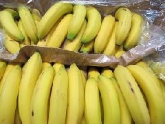 Banane klein, reif, gelb