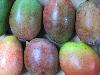 Mango versch. Sorten