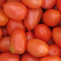 Tomate, Romatomate, Eiertomate