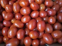 Tomate, Cherrytomate
