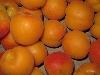 Aprikose orange