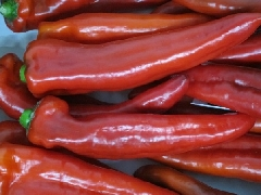 Paprika, Spitzpaprika rot KLII