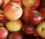 Apfel Akane KLII