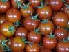 Tomate, Cocktailtomate BIOLAND