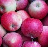Apfel Koru (ähnlich Braeburn) KLII