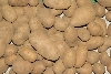 Kartoffeln Belana