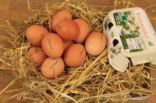Eier Freiland Bioland mit Bruderhahnaufzucht!