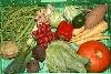 Gemüse Abo5 für ca. 2 Pers.