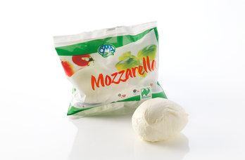 Bio Mozzarella 45%F